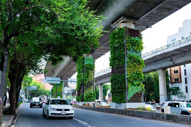 Jardins verticais tomam conta de um viaduto no México